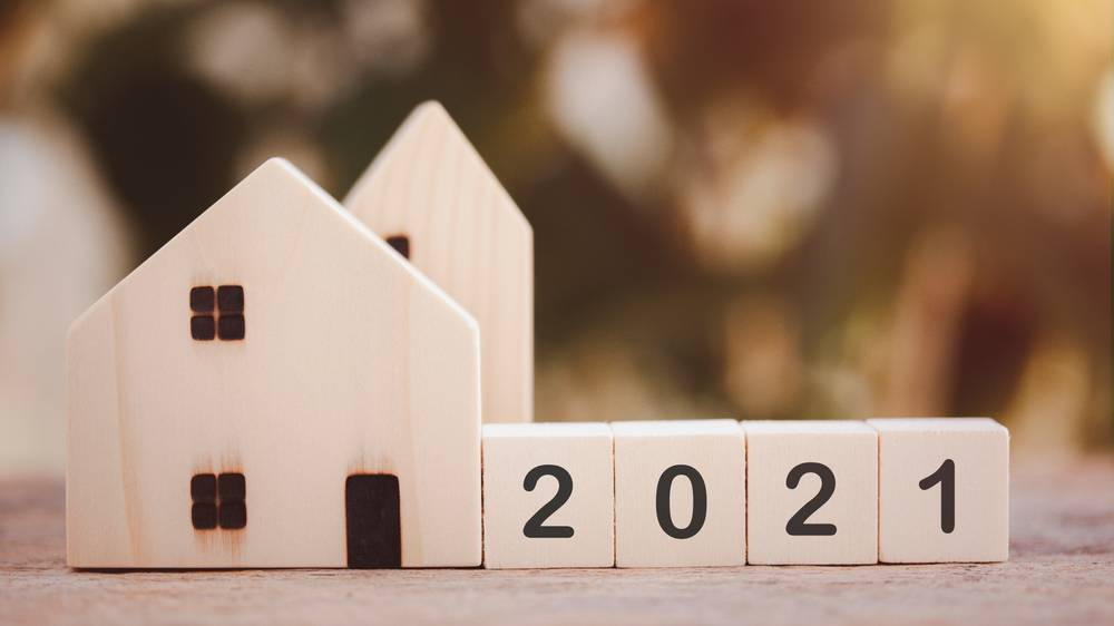 Experts size up the 2021 market