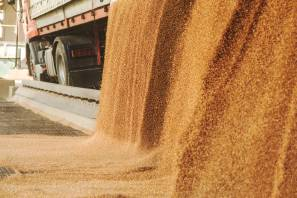 Australia has a grain freight advantage into South East Asia, but lower new crop Russian prices mean Australian export offers have had to adjust lower to compete with aggressive Black Sea offers.